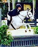 Cloud Nine pony for sale or lease