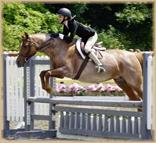 Potpourri jumping