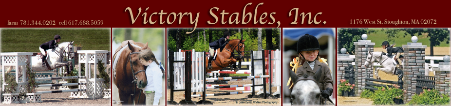 Victory Stables, Inc. top banner
