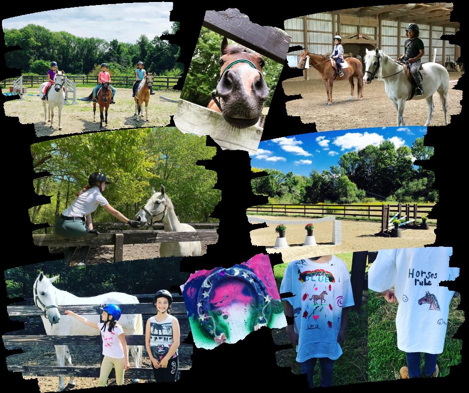 Summer horseback riding day program programs for boys and girls.